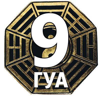 Число Гуа 9